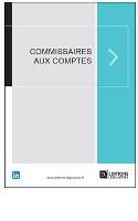 Impact_de_la_loi_Sapin_2_sur_les_commissaires_aux_comptes.PNG