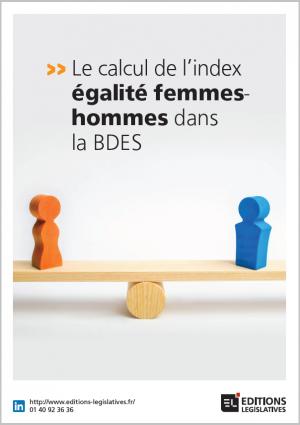COUV_LB_Le_calcul_de_l_index_galit_FH_dans_la_BDES.png