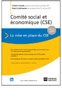Comite_social_et_economique_mise_en_place.PNG