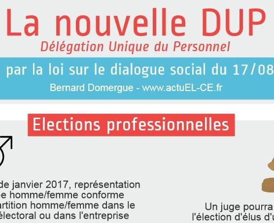 Notre Infographie Sur La Delegation Unique Du Personnel Legale