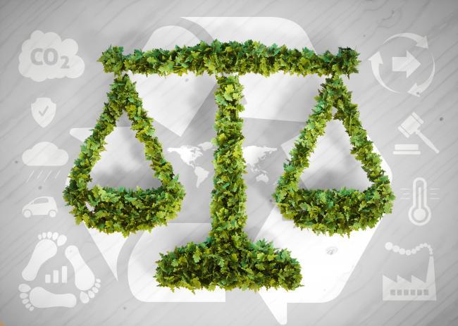 Droit de l'environnement : l'échelle des peines est à revoir