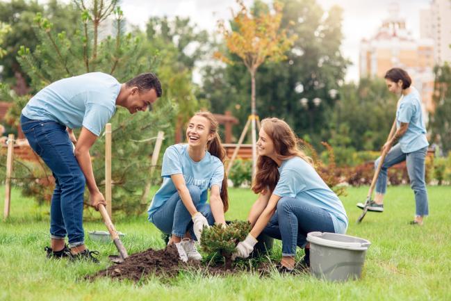 Activités sociales et culturelles : les CSE sur la voie de la transition écologique